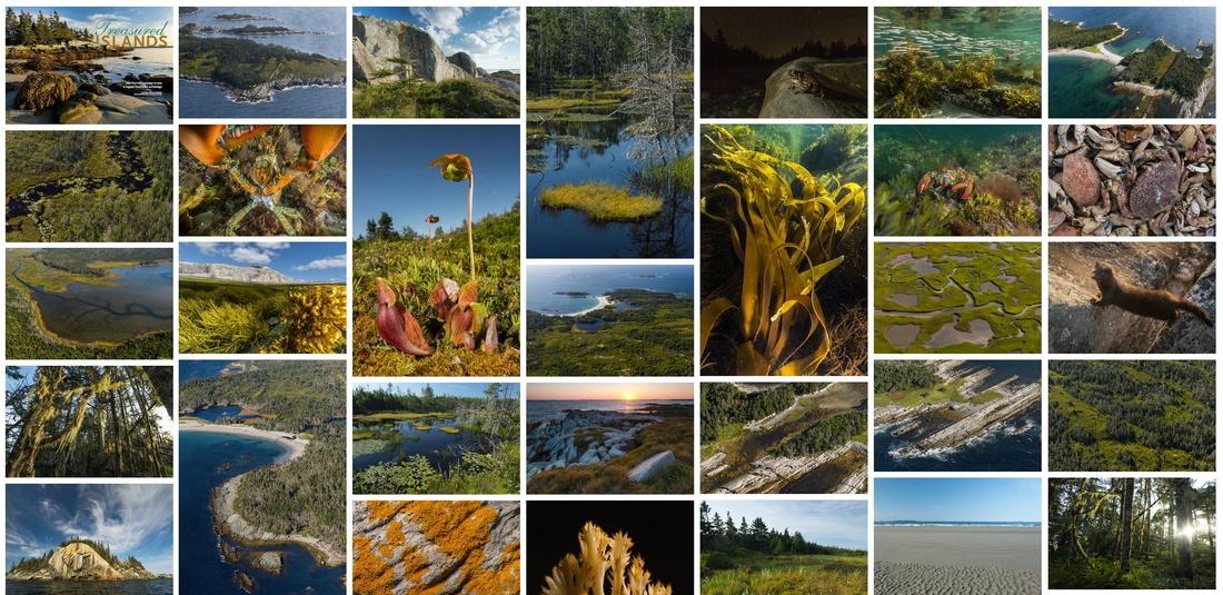nick-hawkins-100-wild-islands-resized
