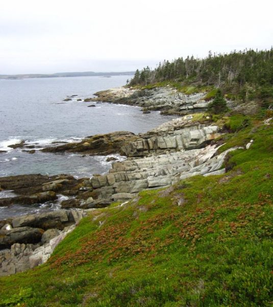 Five Eastern Shore hiking trails make this top 25 list