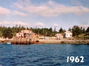 1962 to 2010: A comparison of 'Backshore'